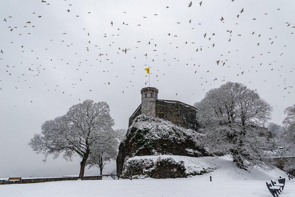 Janvier • Il neige sur la citadellle